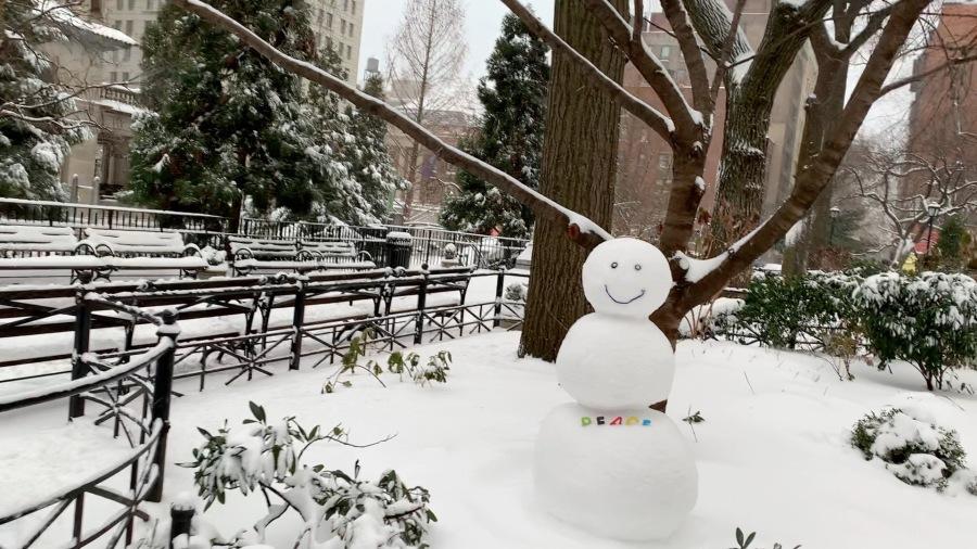 A Little Snow inNYC